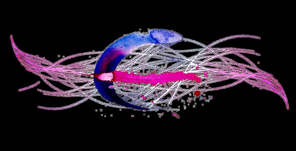 https://cdn.ttc.io/i/fit/1000/0/sm/0/plain/kit.exposingtheinvisible.org/il/osint-02-cik-illustration.png
