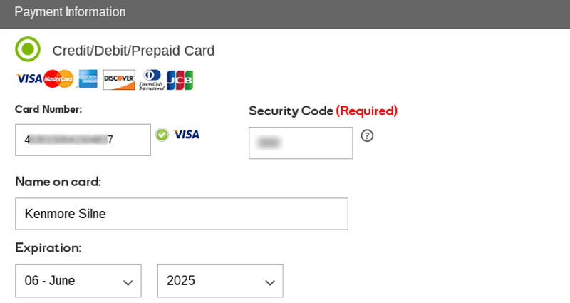 Payment info for domain
